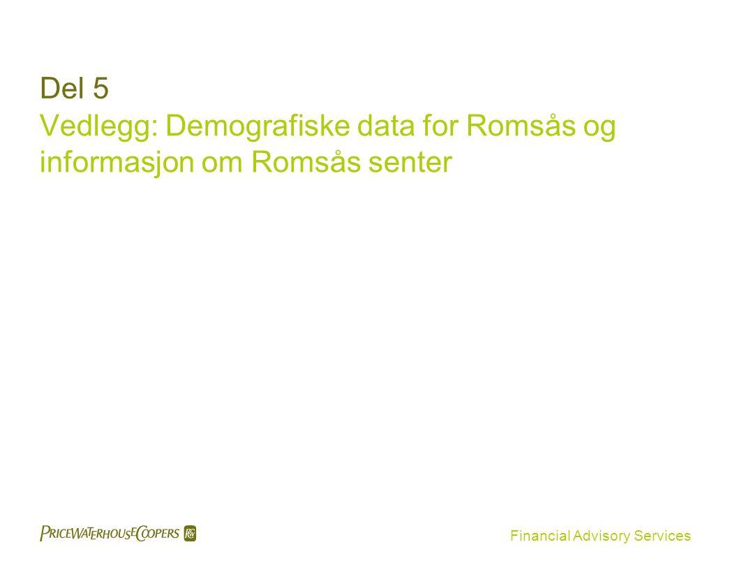 Financial Advisory Services Del 5 Vedlegg: Demografiske data for Romsås og informasjon om Romsås senter