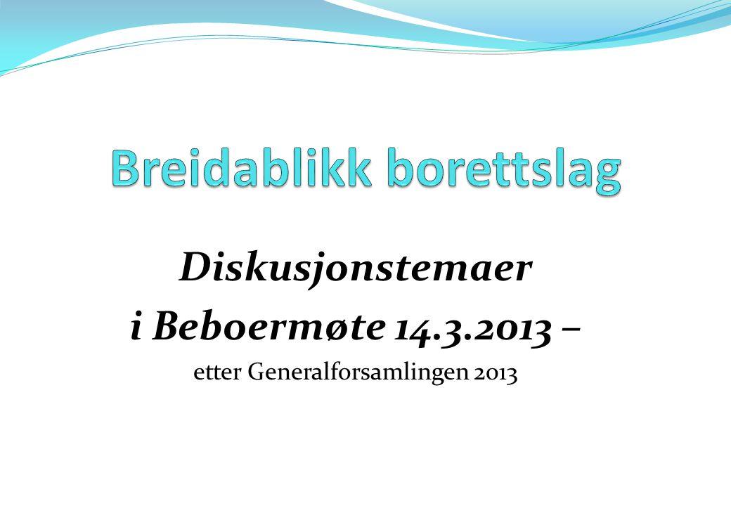 Diskusjonstemaer i Beboermøte 14.3.2013 – etter Generalforsamlingen 2013
