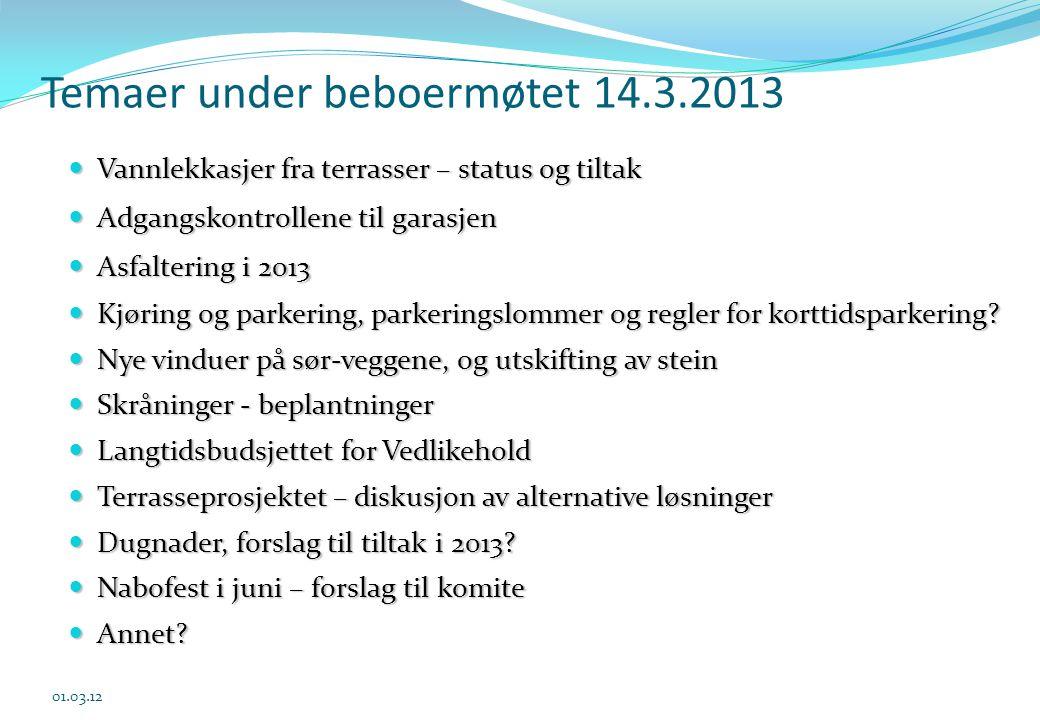 Temaer under beboermøtet 14.3.2013  Vannlekkasjer fra terrasser – status og tiltak  Adgangskontrollene til garasjen  Asfaltering i 2013  Kjøring o