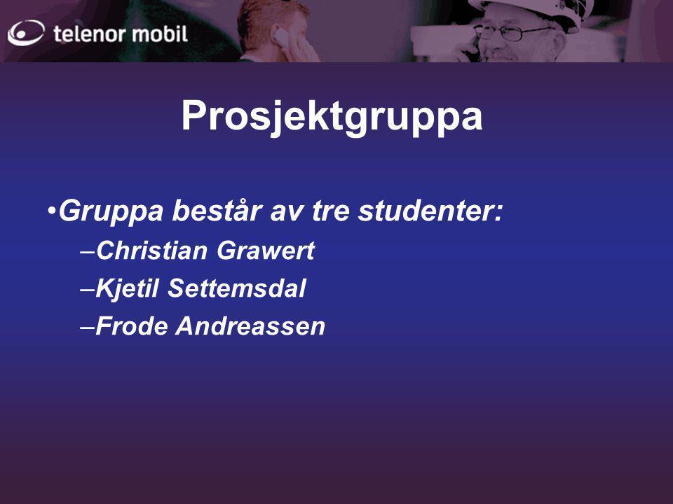 Prosjektgruppa •Gruppa består av tre studenter: –Christian Grawert –Kjetil Settemsdal –Frode Andreassen