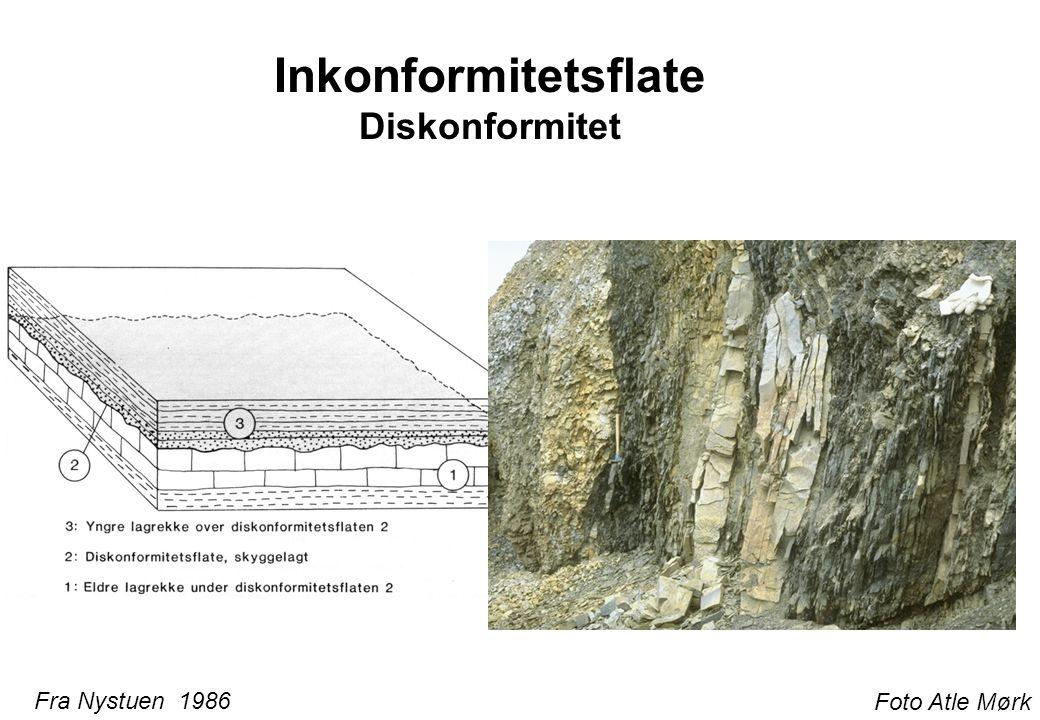 Inkonformitetsflate Vinkeldiskordans Foto Atle Mørk Fra Nystuen 1986 40 M år mangler