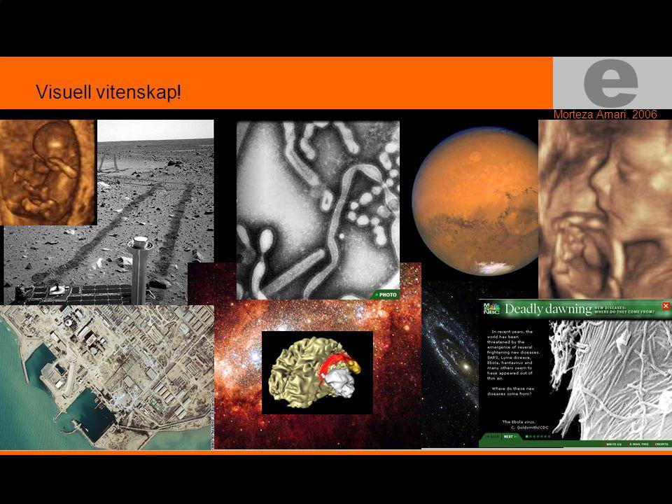 e Morteza Amari, 2006 Visuell vitenskap!
