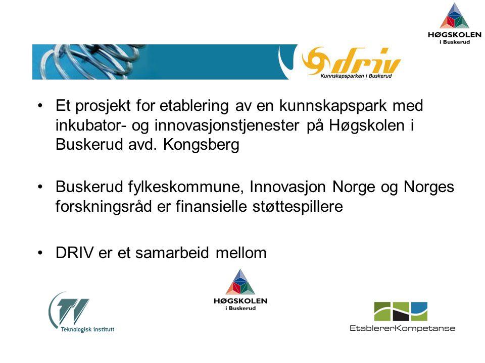 •Et prosjekt for etablering av en kunnskapspark med inkubator- og innovasjonstjenester på Høgskolen i Buskerud avd.