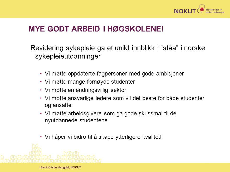| Berit Kristin Haugdal, NOKUT MYE GODT ARBEID I HØGSKOLENE.