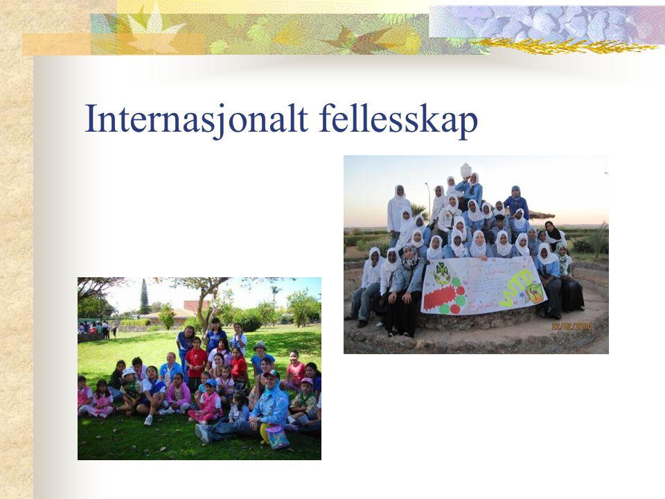Internasjonalt fellesskap