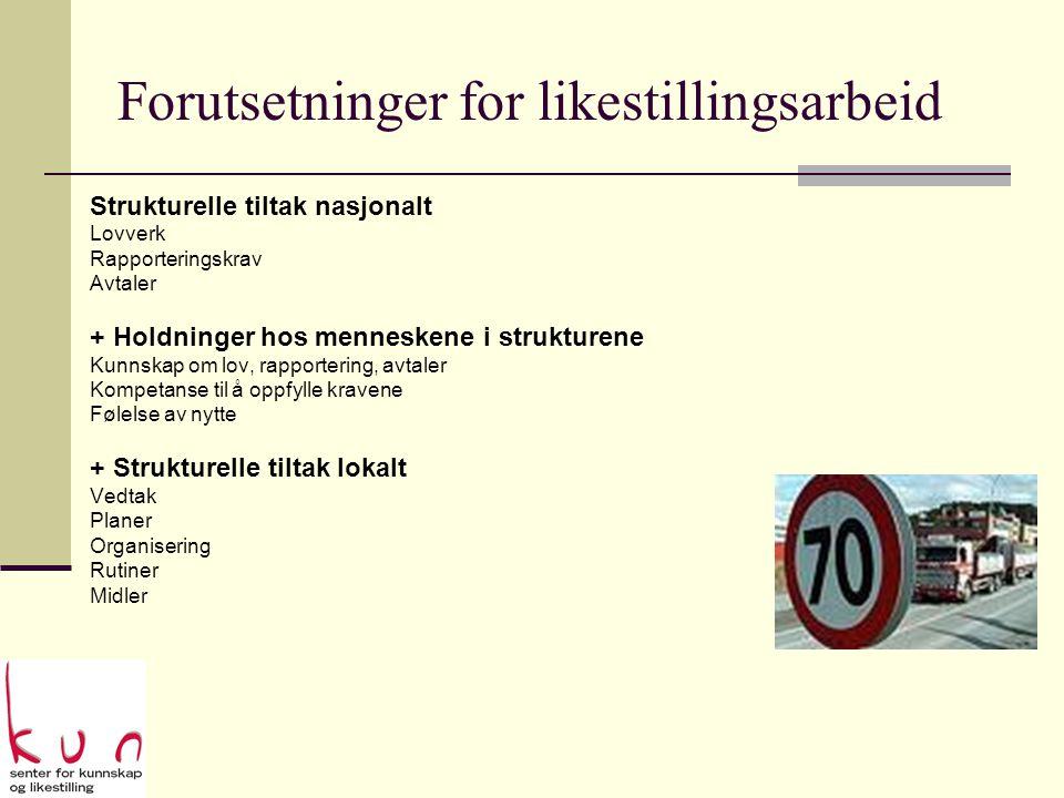 Praksis: Den harde kjerne  Personalkonsulent  Likestillingsutvalget  Ordfører og politikere  Plansjef  Fagmiljø
