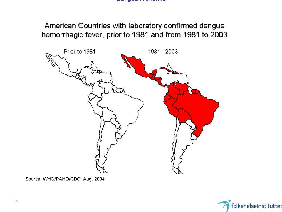 8 Dengue i Amerika