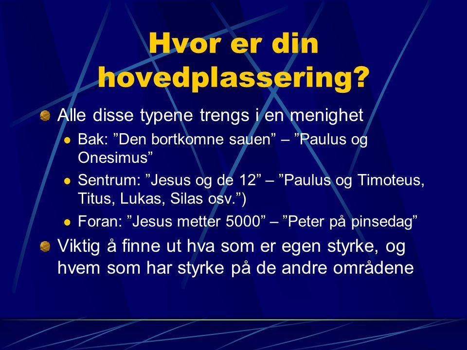 """Hvor er din hovedplassering? Alle disse typene trengs i en menighet  Bak: """"Den bortkomne sauen"""" – """"Paulus og Onesimus""""  Sentrum: """"Jesus og de 12"""" –"""