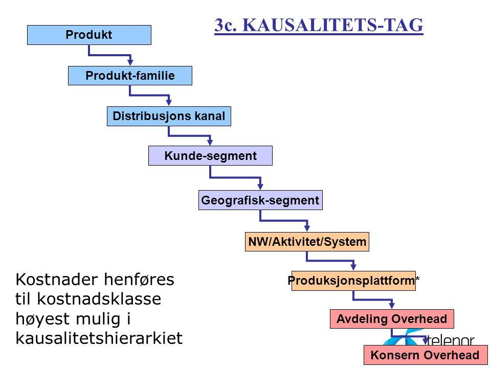 14 Produkt Produkt-familie Distribusjons kanal Kunde-segment Geografisk-segment NW/Aktivitet/System Produksjonsplattform* Avdeling Overhead Konsern Overhead 3c.