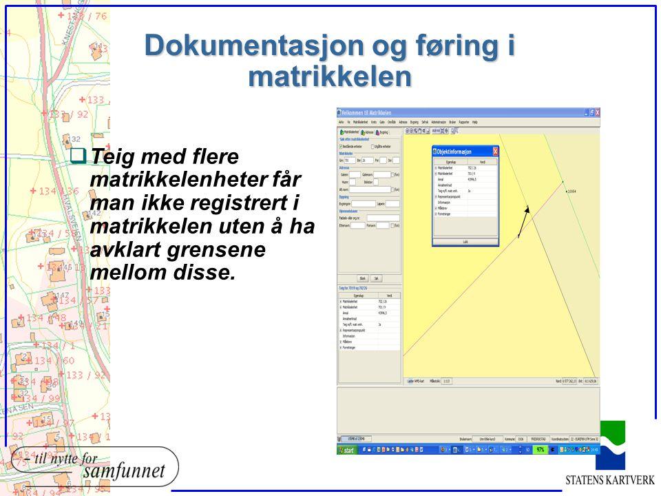 Dokumentasjon og føring i matrikkelen qTeig med flere matrikkelenheter får man ikke registrert i matrikkelen uten å ha avklart grensene mellom disse.