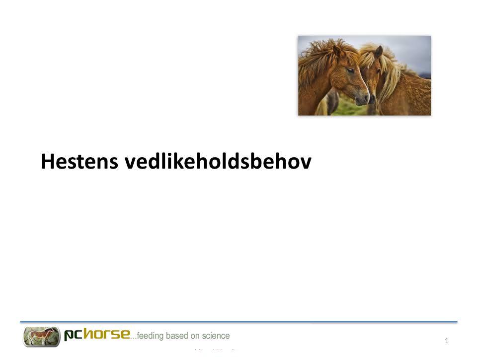 Hestens vedlikeholdsbehov 1