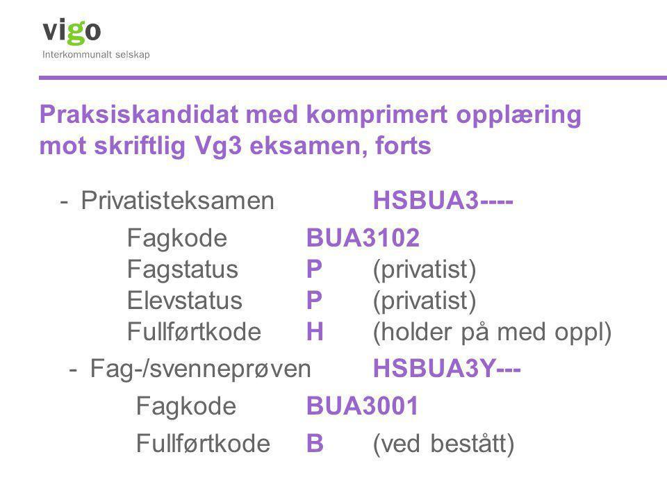 Praksiskandidat med komprimert opplæring mot skriftlig Vg3 eksamen, forts -Privatisteksamen HSBUA3---- FagkodeBUA3102 Fagstatus P (privatist) Elevstat