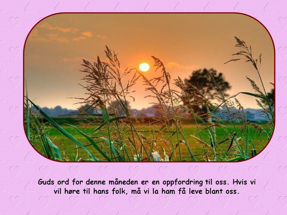 « Han skal bo hos dem, og de skal være hans folk, og Gud selv skal være hos dem. (Ap 21,3)