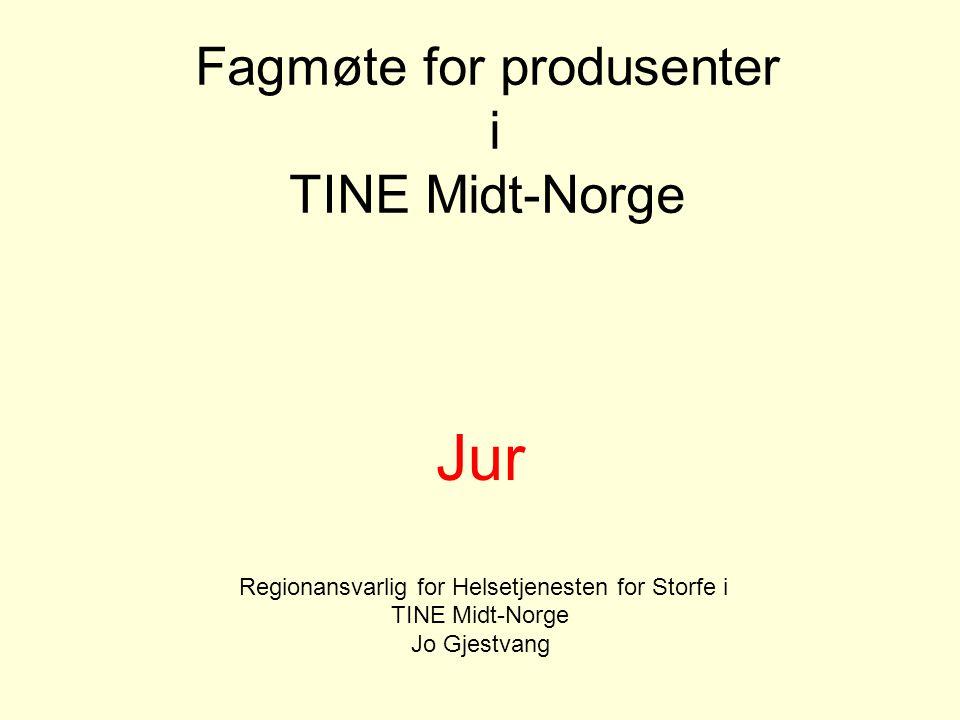Fagmøte for produsenter i TINE Midt-Norge Jur Regionansvarlig for Helsetjenesten for Storfe i TINE Midt-Norge Jo Gjestvang Desember 2006