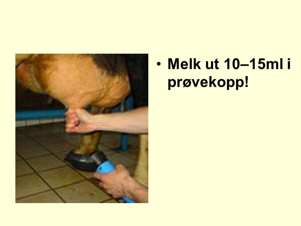 •Melk ut 10–15ml i prøvekopp!
