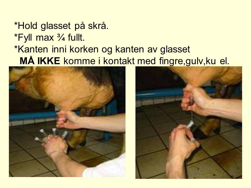 *Hold glasset på skrå. *Fyll max ¾ fullt. *Kanten inni korken og kanten av glasset MÅ IKKE komme i kontakt med fingre,gulv,ku el.