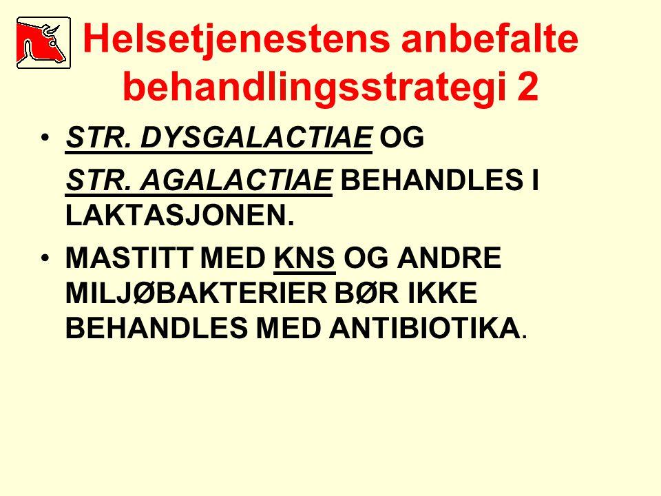 Helsetjenestens anbefalte behandlingsstrategi 2 •STR. DYSGALACTIAE OG STR. AGALACTIAE BEHANDLES I LAKTASJONEN. •MASTITT MED KNS OG ANDRE MILJØBAKTERIE
