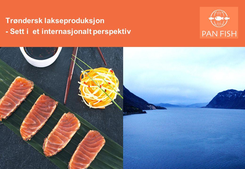 Trøndersk lakseproduksjon - Sett i et internasjonalt perspektiv