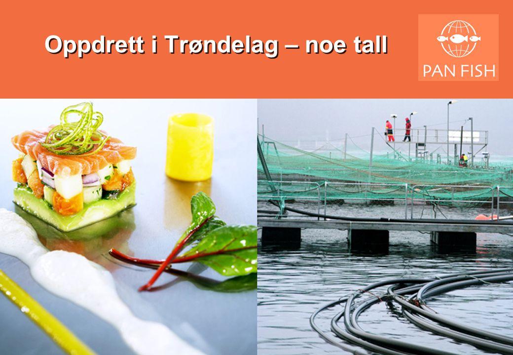 Trøndelag – Produksjon av laksefisk •Settefisk –Trøndelag har ca 28 anlegg i kommersiell drift med ca 29 mill i konsesjonskapasitet –Dette utgjør knappe ca.