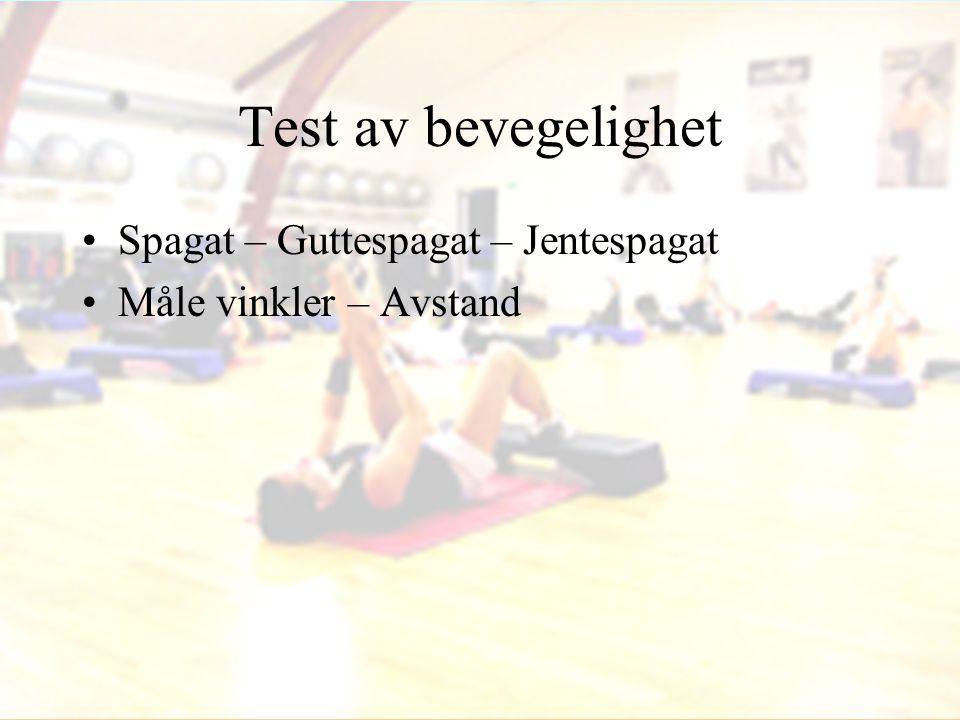 Test av bevegelighet •Spagat – Guttespagat – Jentespagat •Måle vinkler – Avstand