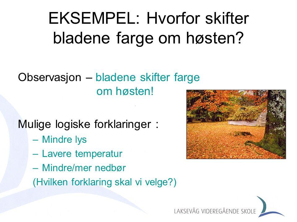 EKSEMPEL: Hvorfor skifter bladene farge om høsten? Observasjon – bladene skifter farge om høsten! Mulige logiske forklaringer : –Mindre lys –Lavere te