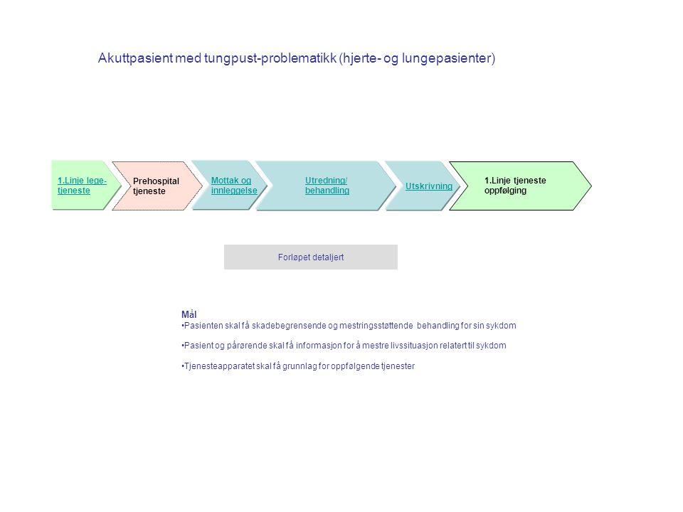 Akuttpasient med tungpust-problematikk (hjerte- og lungepasienter) Mottak og innleggelse Utredning/ behandling Utskrivning Prehospital tjeneste 1.Linj