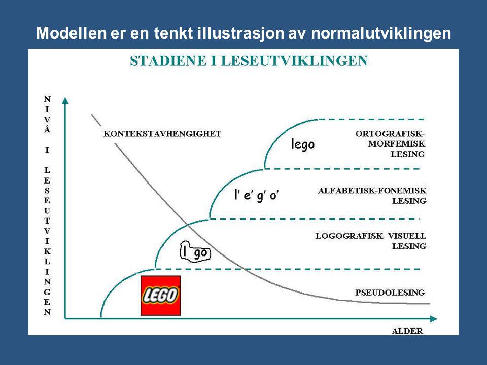 Modellen er en tenkt illustrasjon av normalutviklingen Fra Høien og Lundberg (1997) Dysleksi. Fra teori til praksis