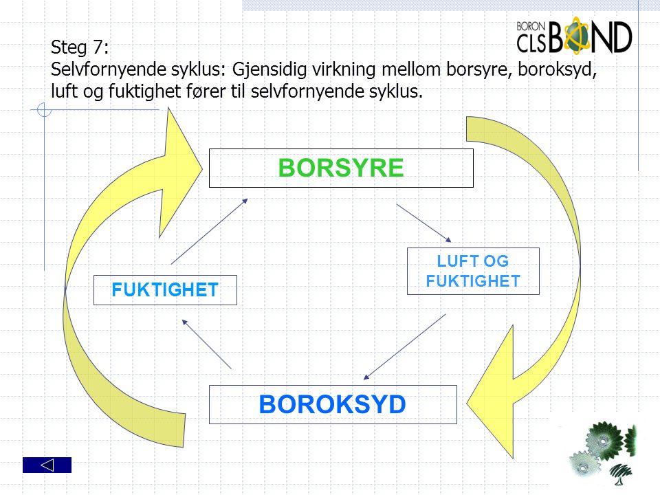 Steg 7: Selvfornyende syklus: Gjensidig virkning mellom borsyre, boroksyd, luft og fuktighet fører til selvfornyende syklus. BORSYRE BOROKSYD FUKTIGHE