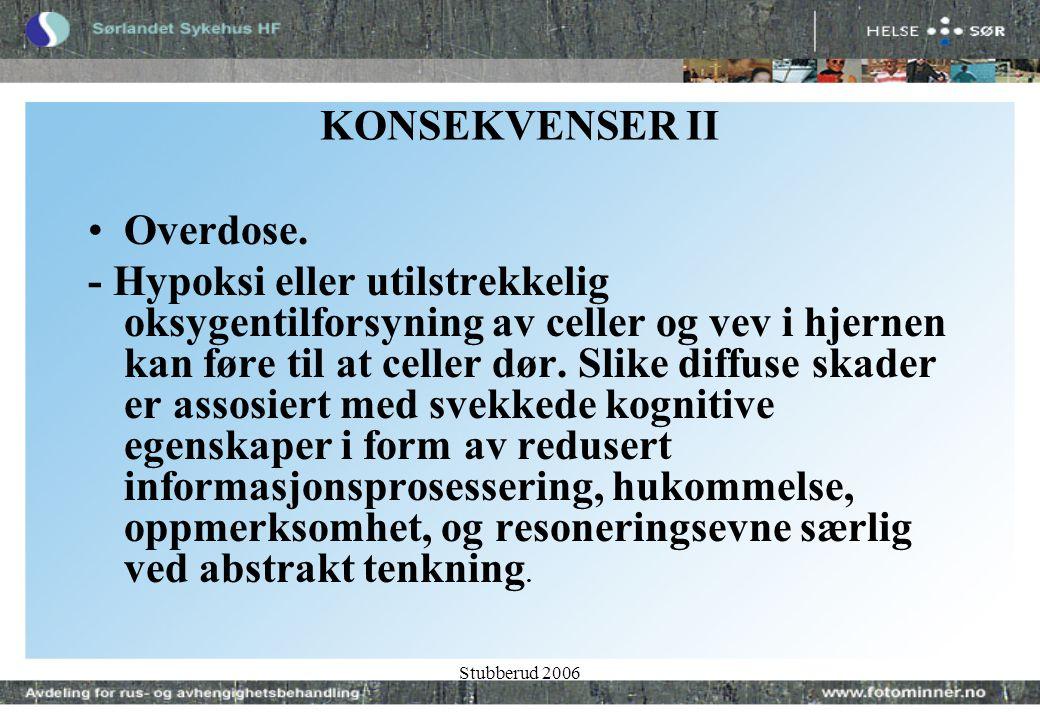 Stubberud 2006 KONSEKVENSER II •Overdose.