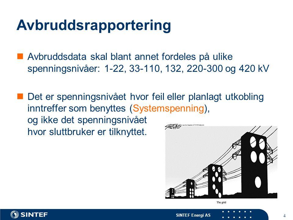 SINTEF Energi AS 15 Før rapporteringen  Rydd opp i databasen  Er alle rapporteringspunkt knyttet opp i nettet  Er det sluttbrukere tilknyttet alle rapporteringspunkt.