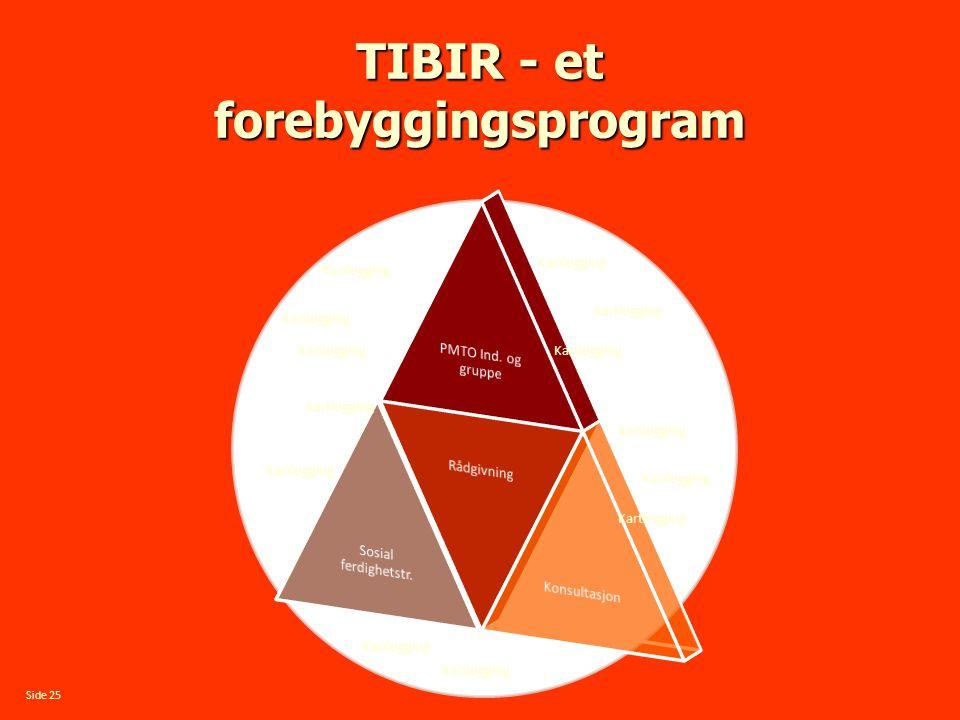 TIBIR - et forebyggingsprogram Kartlegging Side 25 Kartlegging