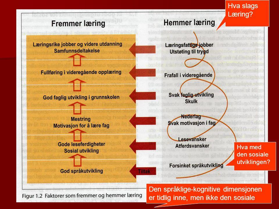 Hva slags Læring? Hva med den sosiale utviklingen? Den språklige-kognitive dimensjonen er tidlig inne, men ikke den sosiale