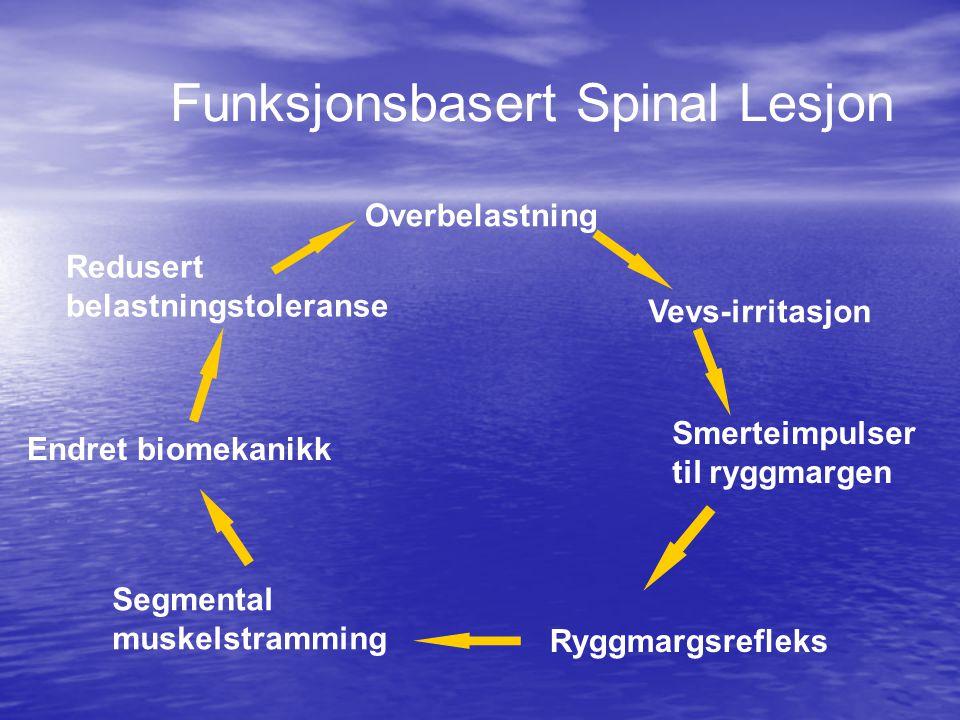 God funksjon God funksjon  Forutsetter harmonisk samspill mellom nerver, muskler og ledd.
