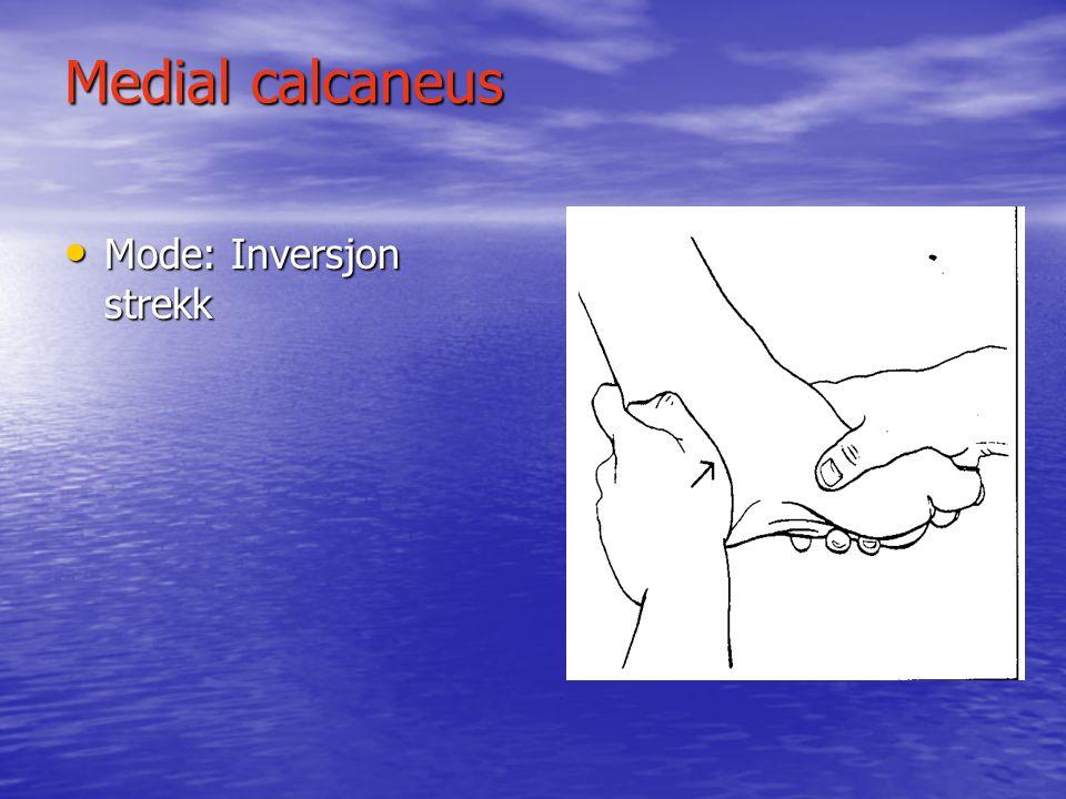 Antero-lateral talus • Begrenset dorsifleksjon • Mode: Eversjon ankel skade