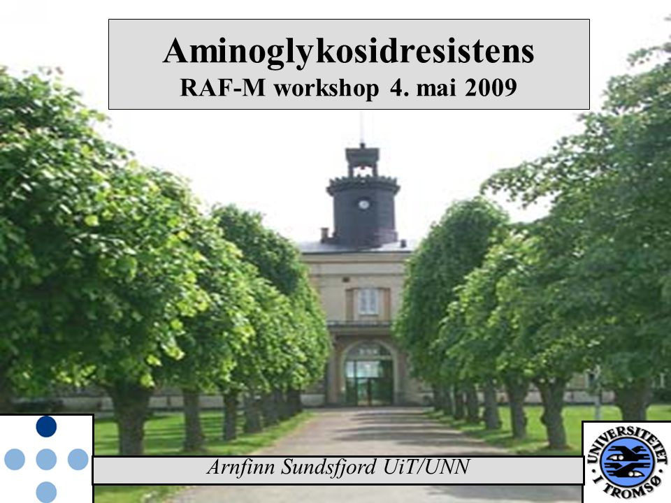 Arnfinn Sundsfjord UiT/UNN Aminoglykosidresistens RAF-M workshop 4. mai 2009