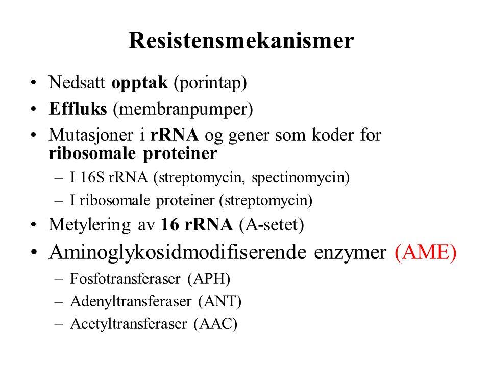 Resistensmekanismer •Nedsatt opptak (porintap) •Effluks (membranpumper) •Mutasjoner i rRNA og gener som koder for ribosomale proteiner –I 16S rRNA (st