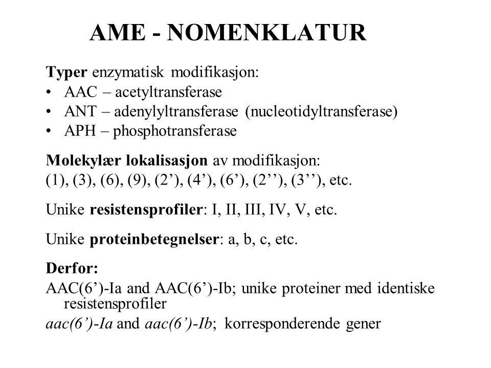 AME - NOMENKLATUR Typer enzymatisk modifikasjon: •AAC – acetyltransferase •ANT – adenylyltransferase (nucleotidyltransferase) •APH – phosphotransferas