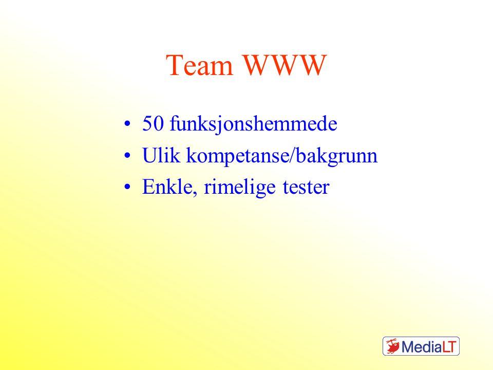 Team WWW •50 funksjonshemmede •Ulik kompetanse/bakgrunn •Enkle, rimelige tester