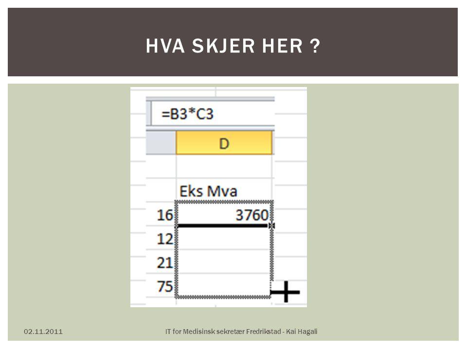 02.11.2011IT for Medisinsk sekretær Fredrikstad - Kai Hagali GJØR HVA ?