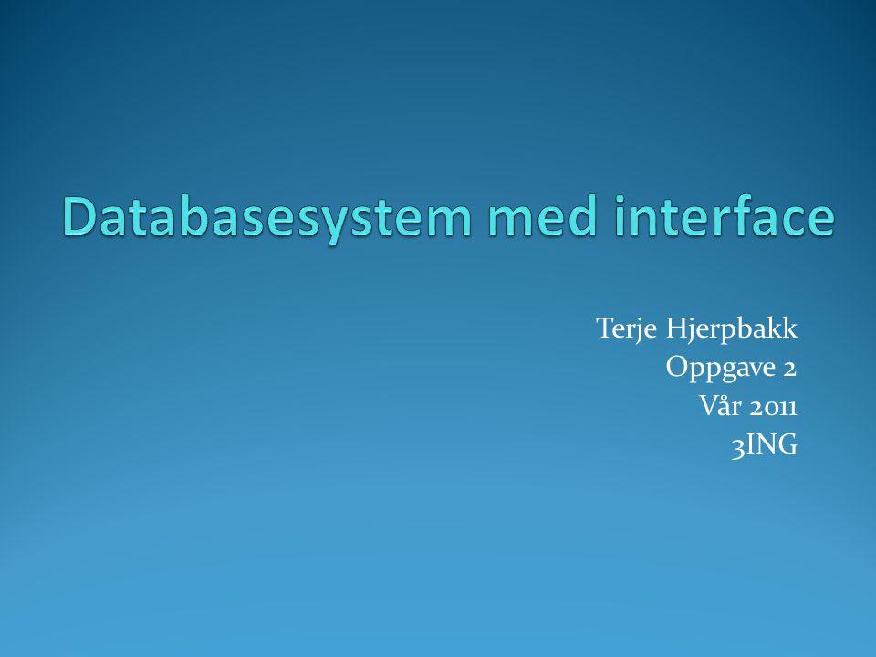 Terje Hjerpbakk Oppgave 2 Vår 2011 3ING