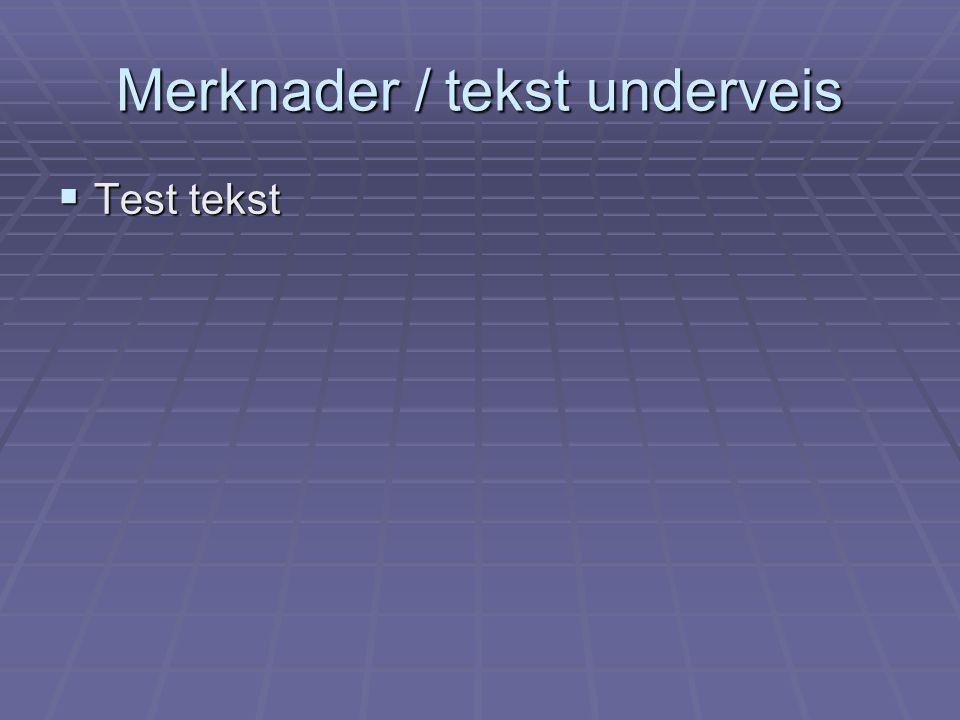 Merknader / tekst underveis  Test tekst