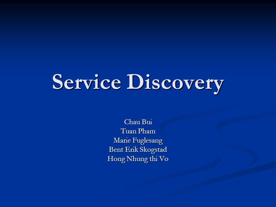 Service Discovery Chau Bui Tuan Pham Marie Fuglesang Bent Erik Skogstad Hong Nhung thi Vo