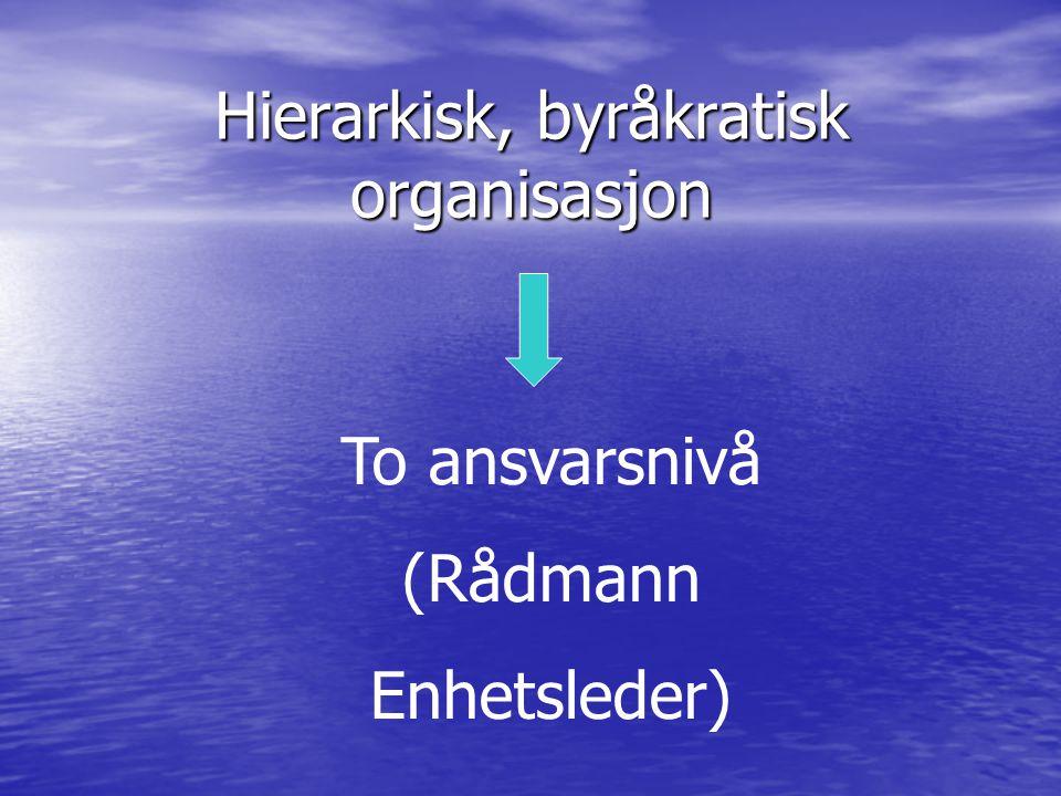 Hierarkisk, byråkratisk organisasjon To ansvarsnivå (Rådmann Enhetsleder)