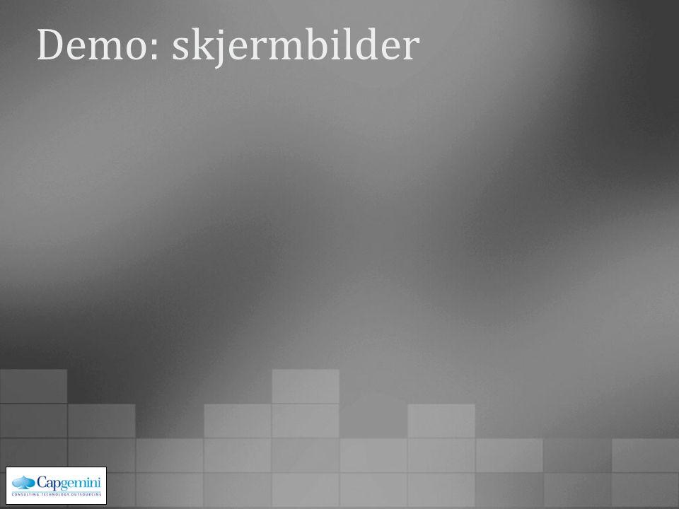Demo: skjermbilder