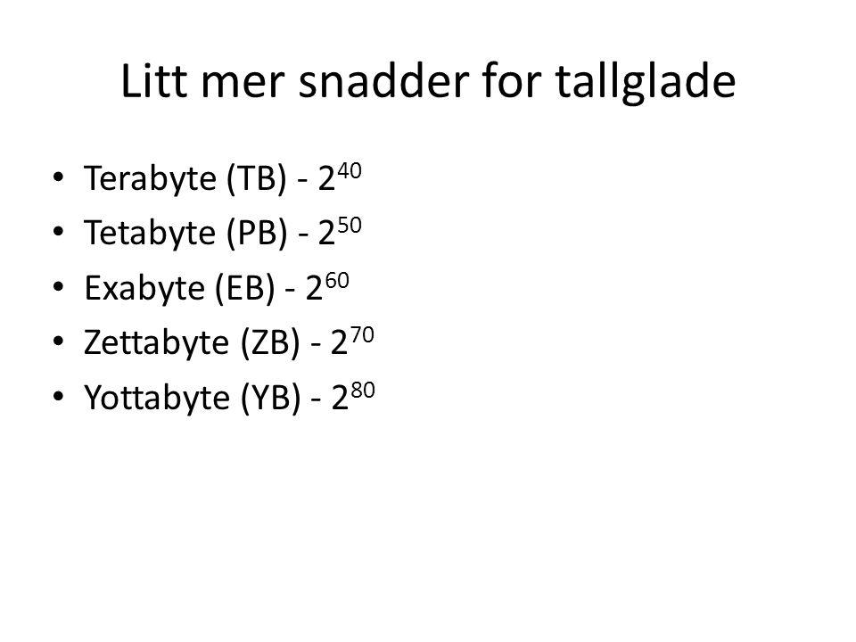 Litt mer snadder for tallglade • Terabyte (TB) - 2 40 • Tetabyte (PB) - 2 50 • Exabyte (EB) - 2 60 • Zettabyte (ZB) - 2 70 • Yottabyte (YB) - 2 80