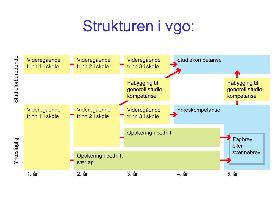 Strukturen i vgo: