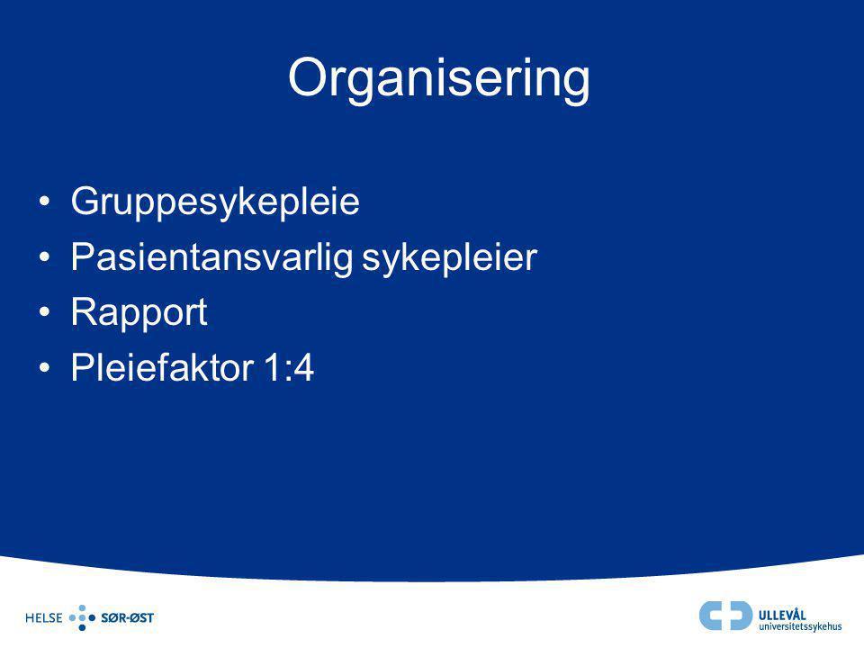 Organisering •Gruppesykepleie •Pasientansvarlig sykepleier •Rapport •Pleiefaktor 1:4