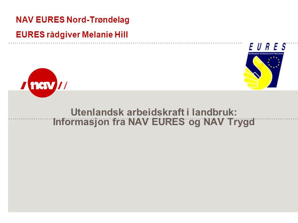 Utenlandsk arbeidskraft i landbruk: Informasjon fra NAV EURES og NAV Trygd NAV EURES Nord-Trøndelag EURES rådgiver Melanie Hill