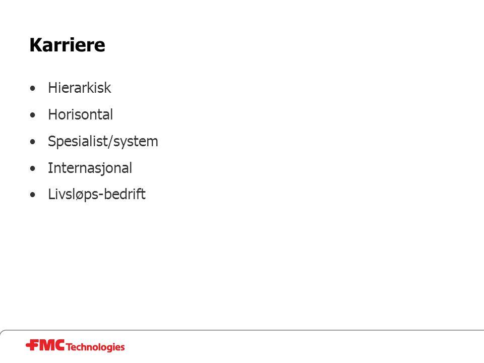 Karriere •Hierarkisk •Horisontal •Spesialist/system •Internasjonal •Livsløps-bedrift