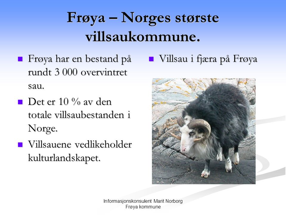 Informasjonskonsulent Marit Norborg Frøya kommune Frøya – Norges største villsaukommune.